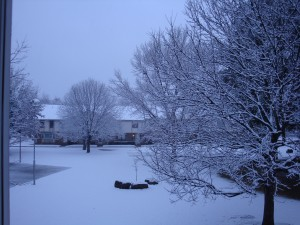 Dallas Gets Snow!!  A LOT Of Snow!!
