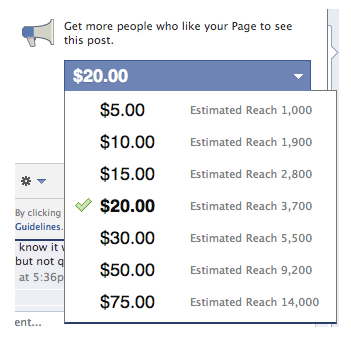 Facebook Charging To Promote Posts!