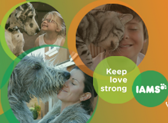 FREE Iams Coupons & Special Offers!