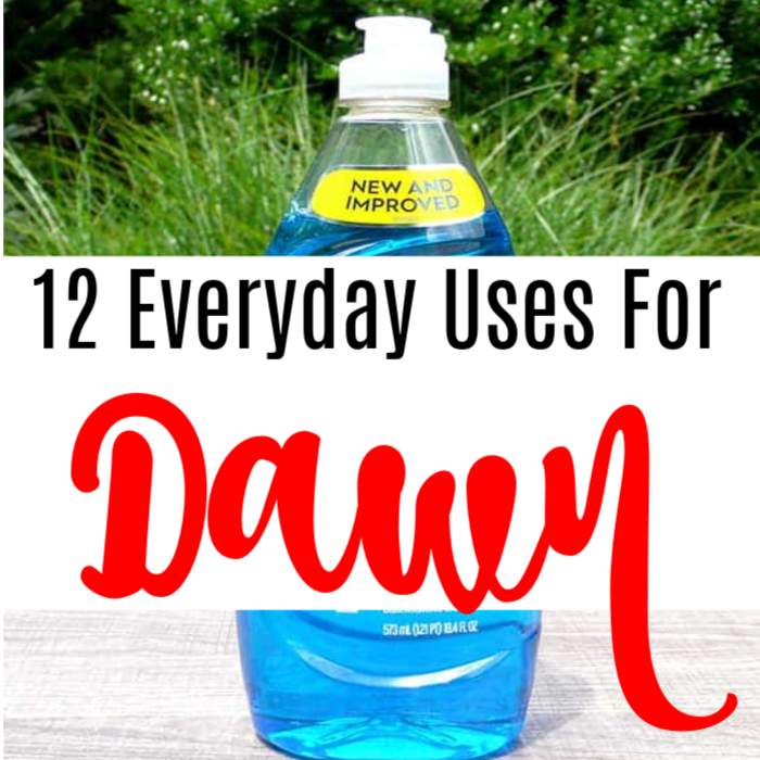 12 Everyday Uses For Dawn Dishwashing Liquid!