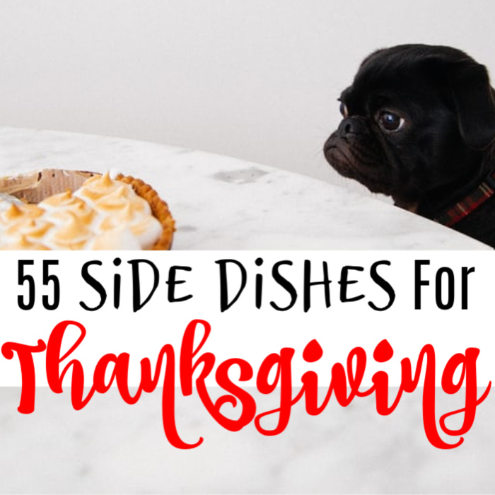 Looking for Thanksgiving Side Dish Recipes?  You found them!  Click through to check them out...