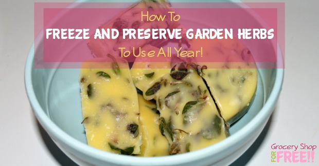 Here's a delicious way to freeze and preserve your garden herbs so you can use them all year!