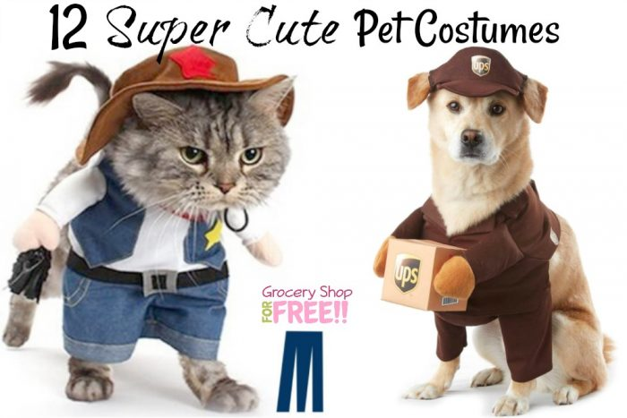Pet Costumes for dogs, Pet Costumes for cats. Pet Costumes for Halloween for dogs & cats.
