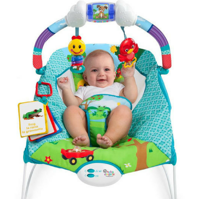 Baby Einstein Bouncer Just $24.98! Down From $50!