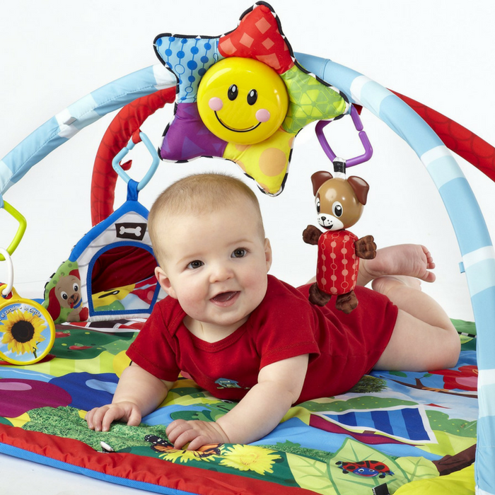 Baby Einstein Play Gym Just $28.50! Down From $65! PLUS FREE Shipping!