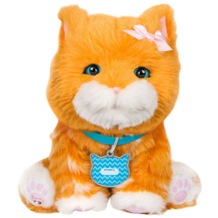 My Dream Kitten Toy