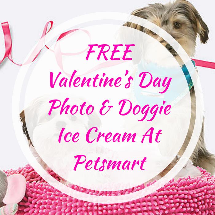 Valentine's Day Photo & Doggie Ice Cream