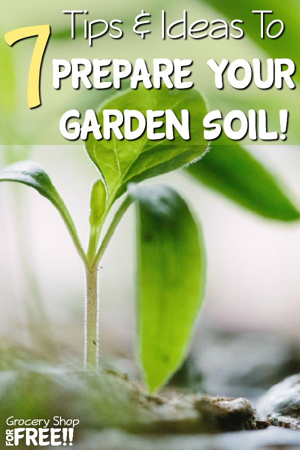 Are you looking for the best means to prep your garden soil?  These 7 tips & ideas will show you how to cultivate the best soil for vegetables & plants of all kinds.  Use these garden soil preparation tips to create the best organic soil for your edibles.  #Bestsoilforvegetables #gardensoil #Gardensoilmixture #Gardensoilprep #gardensoilpreparation #GardenSoilpreparationforraisedbeds #organicsoil #topsoil #topsoil #vegetablegardensoilmix #garden #gardening #vegetables #herbs
