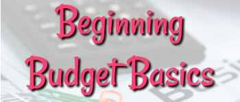 Don't know if you need a household budget worksheet, budget template, cash envelope system, monthly budget spreadsheet or family budget planner? This will help!