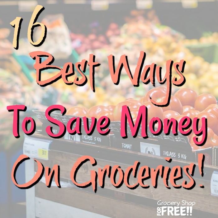 Are you looking for the best ways to save on groceries?  We have compiled 16 ways to save on your family's grocery budget.  Our grocery bill can go sky high in a flash, so, make sure to use these 16 Best Ways To Save Money On Groceries to keep your grocery budget under control.