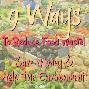 9 Ways To Reduce Food Waste!  Save Money And Help The Environment!