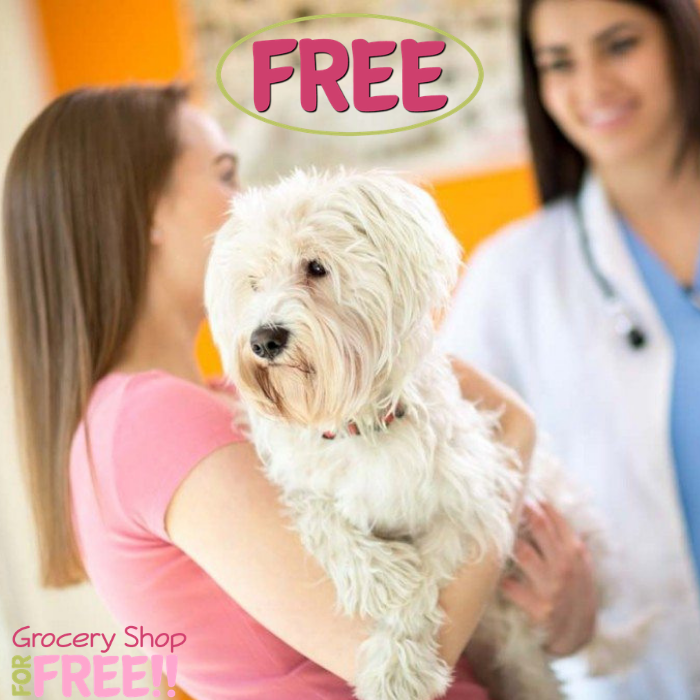 FREE Banfield Pet Hospital Office Visit & Consultation!