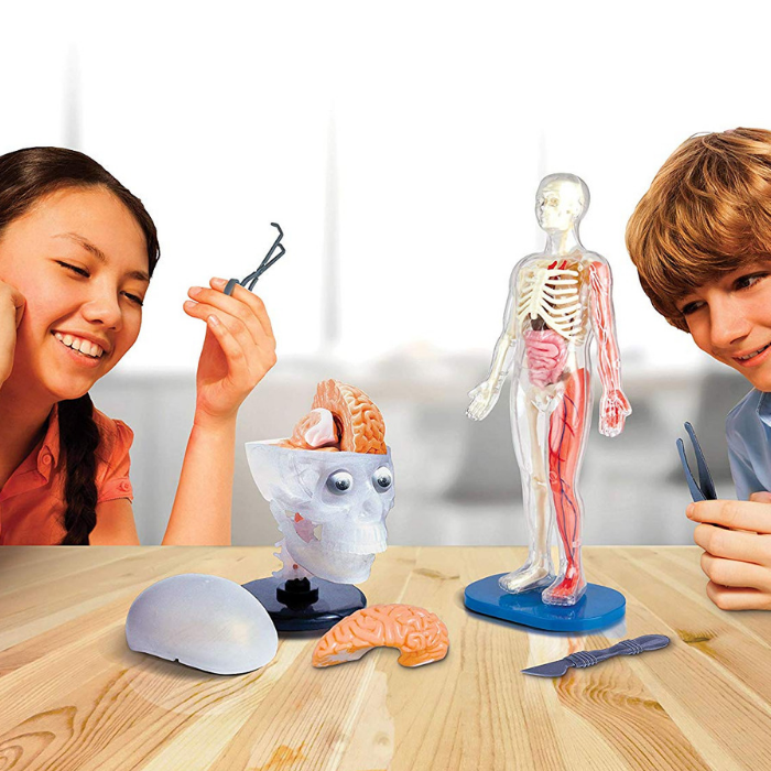 SmartLab Toys Totally Squishy