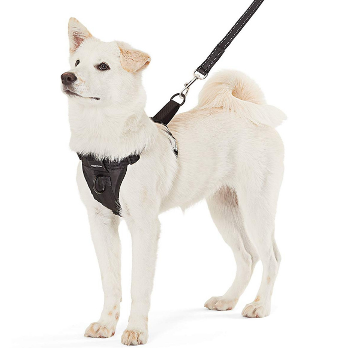 AmazonBasics Dog Harness