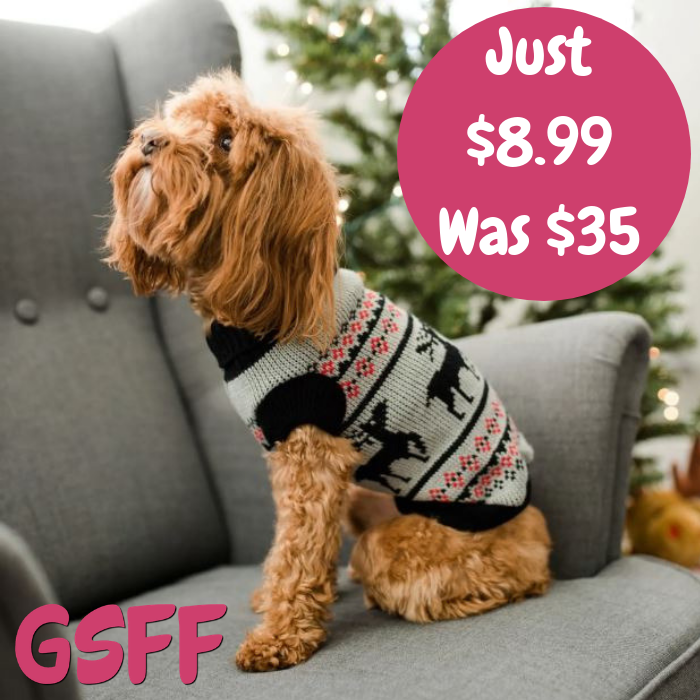 Pet's Holiday Clothes
