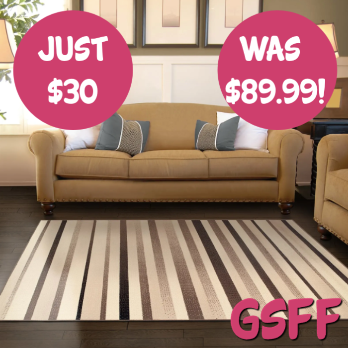 Superior Non-Slip Area Rug Just $30! Down From $90! PLUS FREE Shipping!