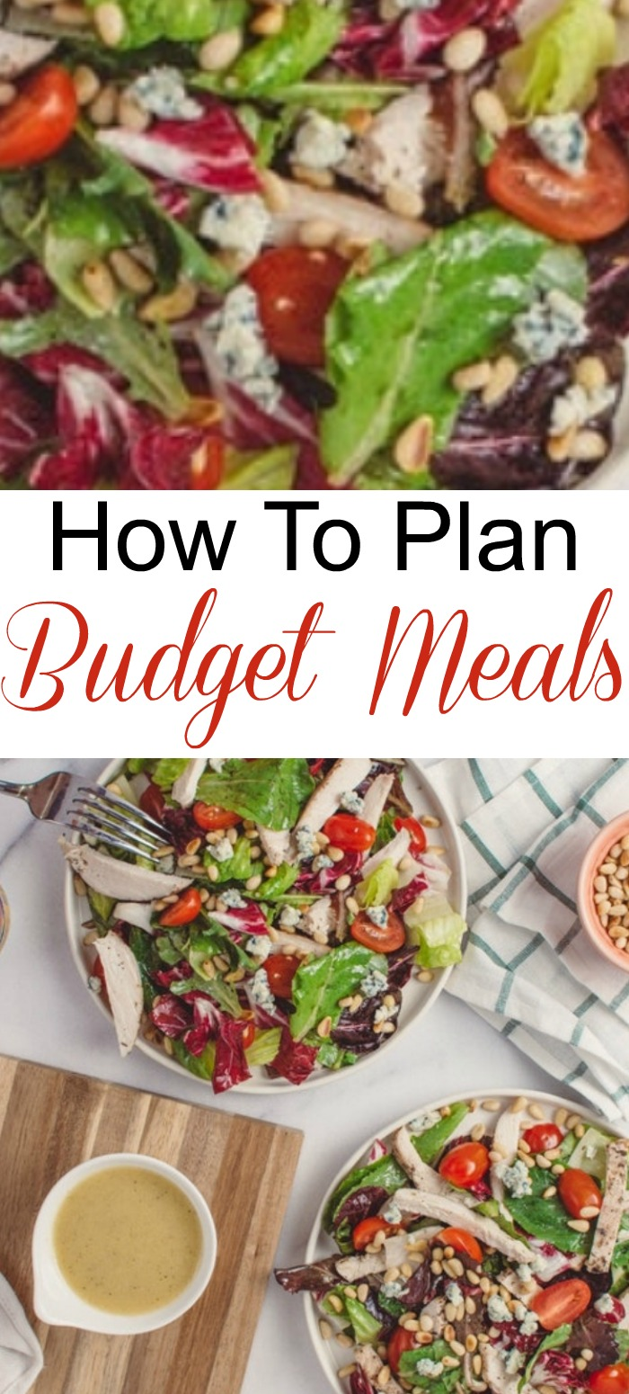 Feeding a family from 2 to 99 can be very expensive. But, with a little planning you can master Budget Meals & plan cheap, realistic meals for your family.