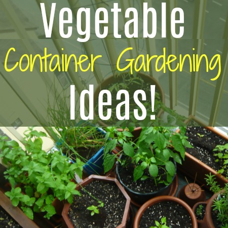 Vegetable Container Gardening Ideas!