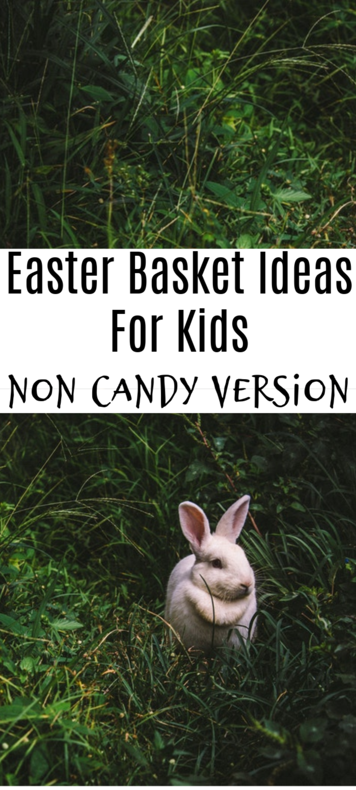 Looking for something other than sugar to fill those baskets? Check out this Easter Gifts For Kids Ideas: Non Candy Version!  We cover some great ideas for you!