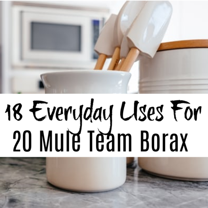 Did you know there are a myriad of ways you can use 20 Mule Team Borax? From pet care to cleaning and   deterring insects to killing weeds, this stuff is fantastic.  Click through to find out more.
