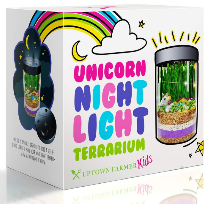 Unicorn Terrarium Kit for Kids