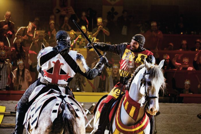 Want to experience Medieval Times at a discount?  Click through to see how you can...
