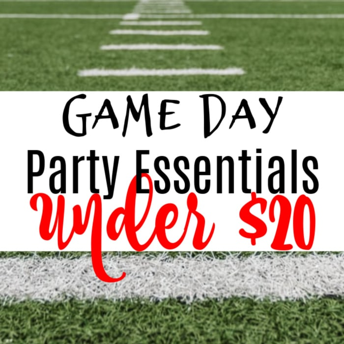 Looking for some great Game Day Essentials that won't break the bank? Well, then you've come to the right place.  Click through to find out more....