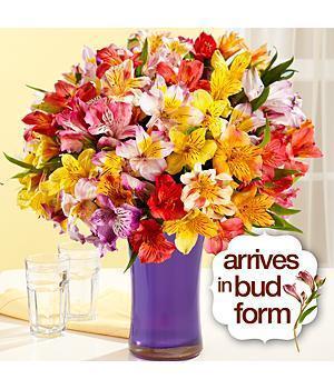 ProFlowers - 100 Blooms Of Love - Flowers