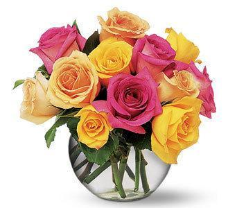 Teleflora - Flowers - Multi-Colored Roses - Roses
