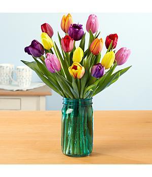 ProFlowers - Multi-Colored Valentine's Tulips - Flowers