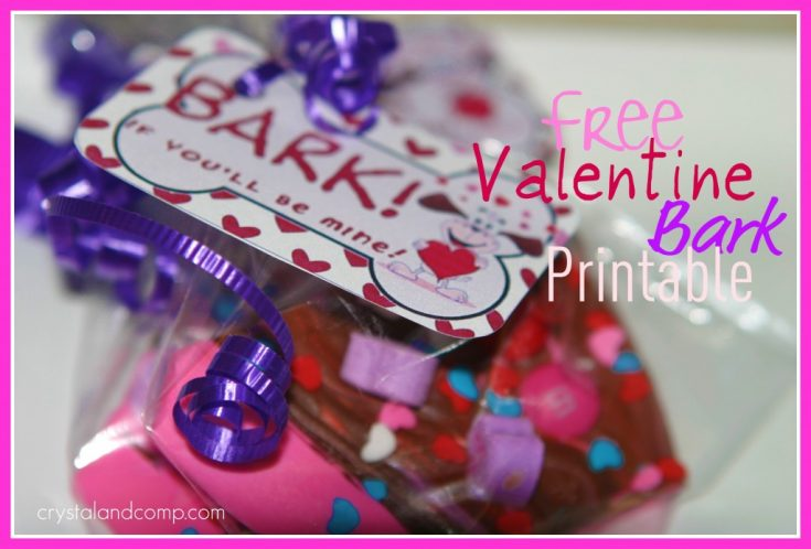 Sweet Valentine Bark with Free Printable