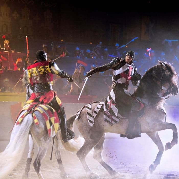Spring Break At Medieval Times - what could be better?  Click through to get all of the details and the discount code...
