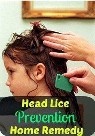 Head Lice Prevention Home Remedy!