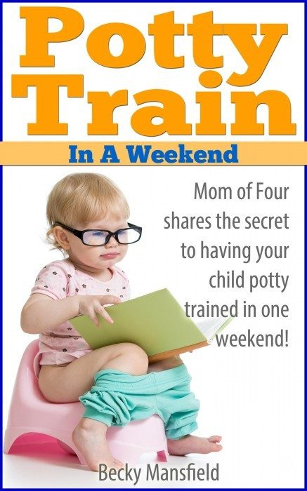 Potty Train In Weekend