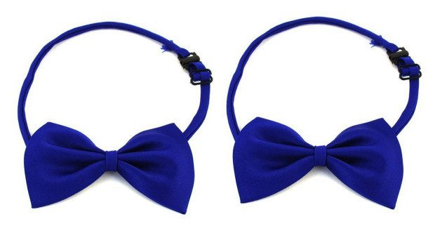 Dog Bow Tie 2 Pack Only $1.93 + FREE Shipping!