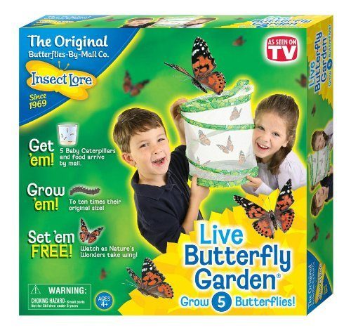 Insect Lore Live Butterfly Garden Just $12.74! (reg. $19.99)
