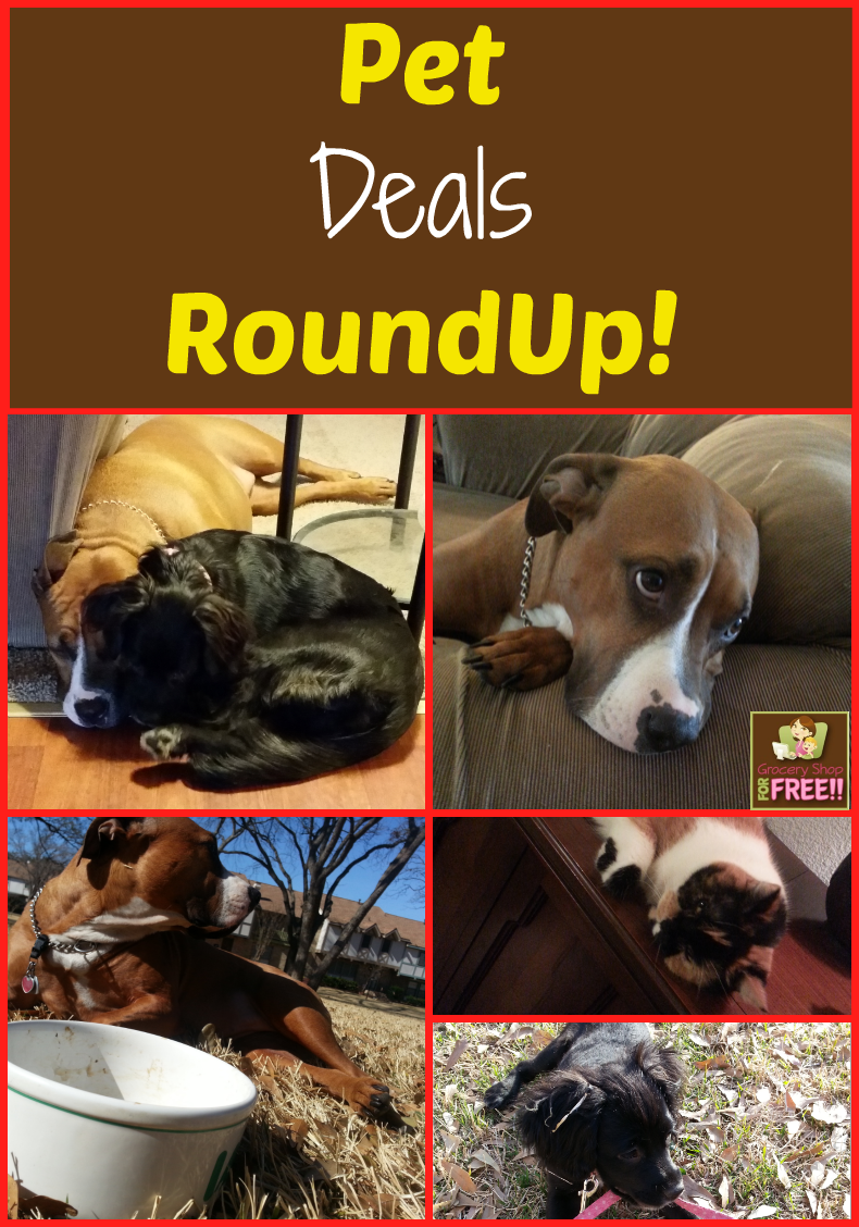 Pet Deals RoundUp