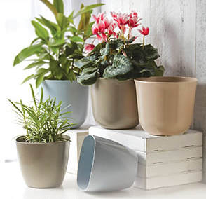 Bloom Room Eco Pots & Saucers As Low As $2.09!