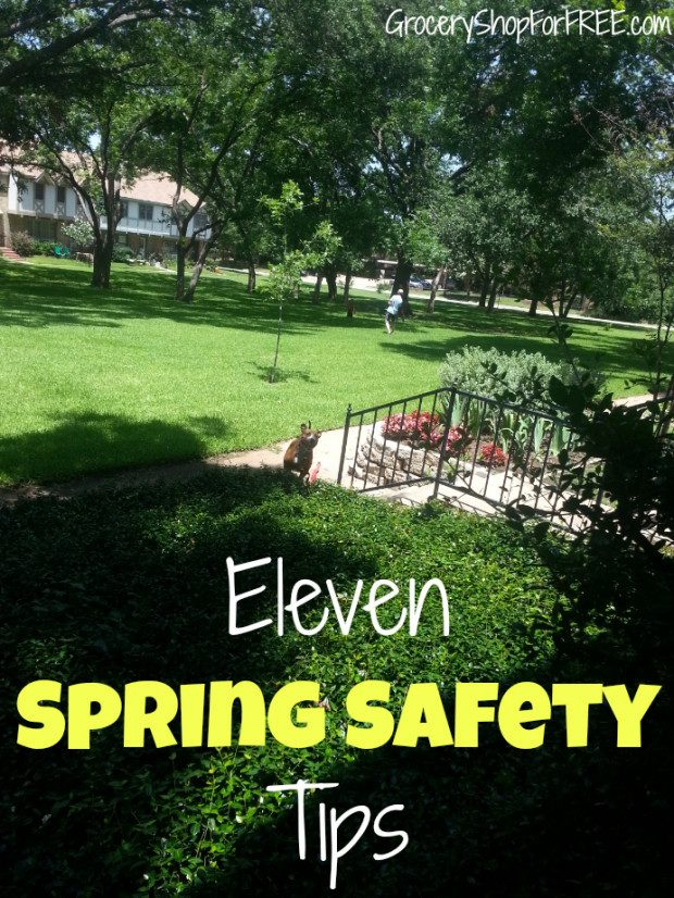 11 Spring Safety Tips