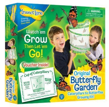 Butterfly Garden Only $14.99! (Reg. $25