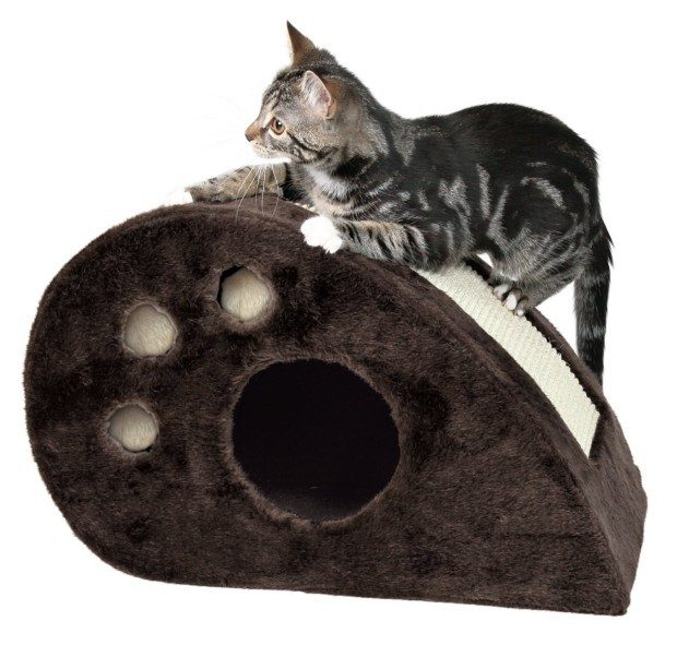Cat Scratcher & Condo Now Just $13.79!