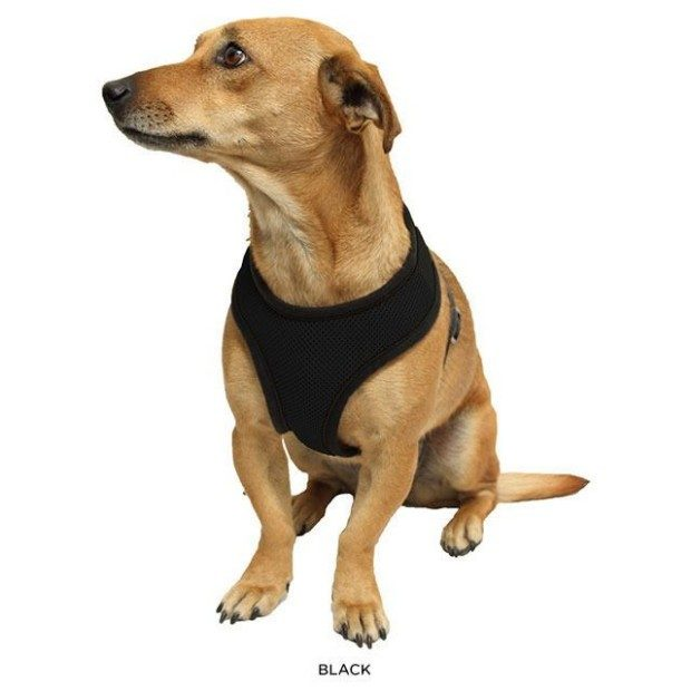 Soft-Mesh Harness With Safety Strap Vest Only $13 Shipped!