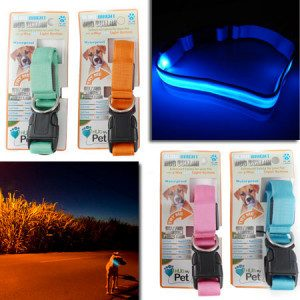 LED Dog Collar Only $6.99 With FREE Shipping