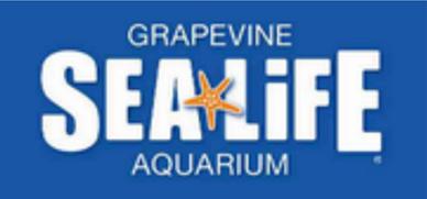 SEA LIFE Aquarium in Grapevine, TX #ad
