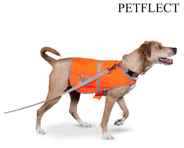 Reflective Dog Safety Vest Just $8.99 Ships FREE!