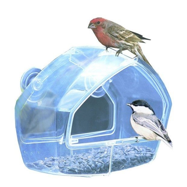 Birdscapes Clear Window Feeder Just $7.74! (Reg. $13.99!)